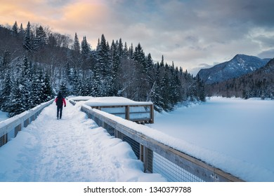 hikers in Parc National de la Jacques-Cartier