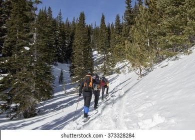 Hikers snowshoeing on a trail above Eldora, near Boulder, Colorado.