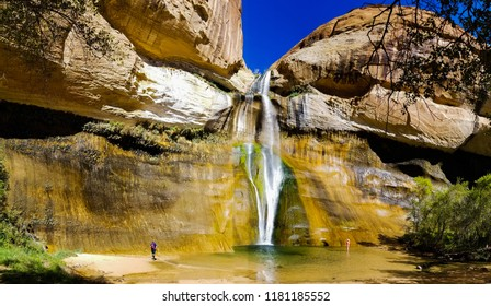 Hikers wading in the waters below Lower Calf Creek Falls in the Grand Staircase Escalante National Monument in Utah