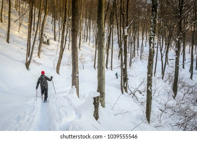Hikers walking in the forest on the hill covered with fresh deep snow at sunset.