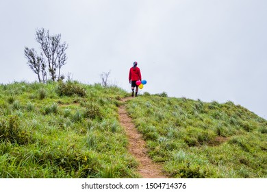 Hikers are walking and happy to the rain forest at Doi Luang Tak,Tak Province,Thailand.