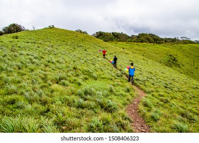 Hikers are walking and happy to the rain forest at Doi Luang Tak, Tak Province, Thailand.