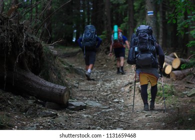 hikers walking in the mountains. goal, success, freedom and achievement concept