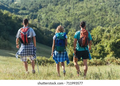 Hikers walking in the nature.