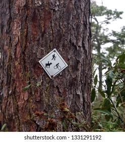 Hiking, Biking, Horseback Riding Sign on a Tree