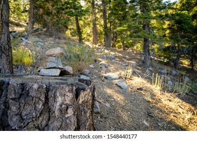 Hiking Cairn along a hiking trail