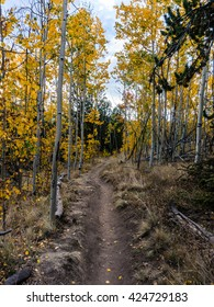 Hiking the Colorado Trail in late September, near Kenosha Pass, Colorado USA