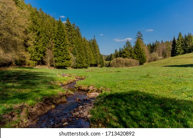 Hiking in different places through the Thuringian Forest - Thüringer Wald / Germany - Shutterstock ID 1713420892
