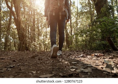 Hiking female have fun and enjoy wilderness exploration. Freedom concept trekking