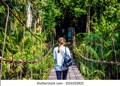 Hiking in the Jungle: an attractive young European tourist girl crossing a bamboo pedestrian suspension bridge over a tropical river on a trail in Asia, Khao Yai National Park, highlight of Thailand