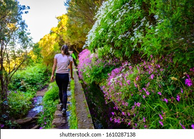 Hiking Levada trail 25 Fontes in Laurel forest - Path to the famous Twenty-Five Fountains in beautiful landscape scenery -  Madeira Island, Portugal