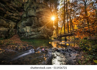 Hiking in luxemburg forest in autumn