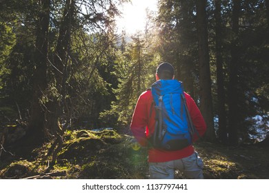 hiking man with blue backpack and red sweater in the forest