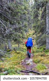 Hiking on the Kungsleden Trail in Sweden in autumn