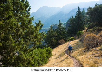 Hiking on Lycian way. Man with backpack is trekking in beautiful nature with yellow grass, coniferous trees, mountain background on Lycian trail, Mediterranean coast near Butterfly Valley, Turkey