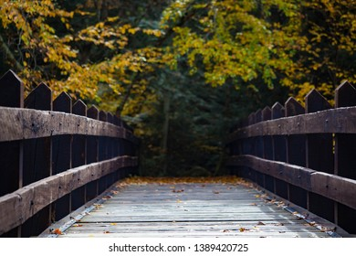 hiking over a beautiful old sturdy bridge that is located at the dells of eau Claire state natural area in marathon county, Wisconsin, north America, northern hemisphere