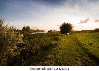 hiking path, bench and water in national park Biesbosch, Dordrecht, The Netherlands