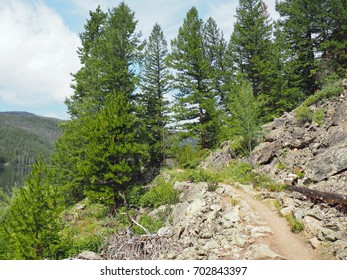 A hiking path by Monarch Lake in Colorado.  There are large trees and rocks along the path.