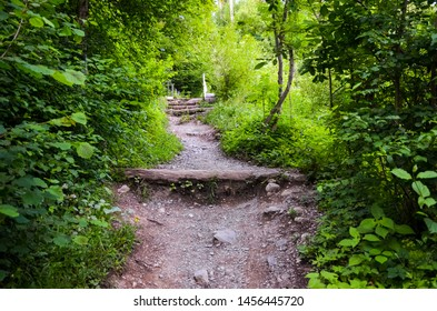 Hiking path in forest leading to the top of famous Harder Kulm, Interlaken, Switzerland. Mountain trail in forest. Hilly terrain. Nature, uphill. Green trees