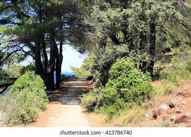 hiking path near Veli Losinj, Croatia