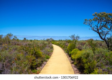 Hiking path at Nilgen Nature Reserve at the coast of West Australia