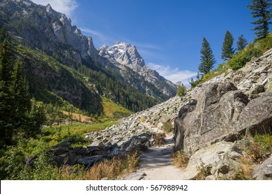 Hiking path through Cascade Canyon in Grand Teton National Park, Wyoming. Jagged mountain peaks rise above the trees and fields in the valley below.