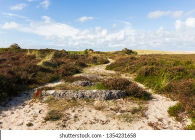 hiking path through dunes