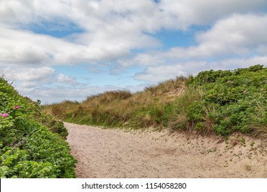 Hiking Path through the Dunes towards Sylt-Rantum Beach / Germany