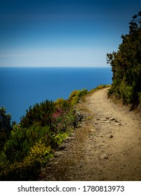 Hiking path through the grapevine in Cinque Terre.  Tuscany Italy