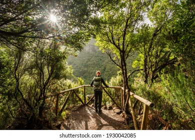 Hiking in Rabacal forest, Madeira Island, Portugal