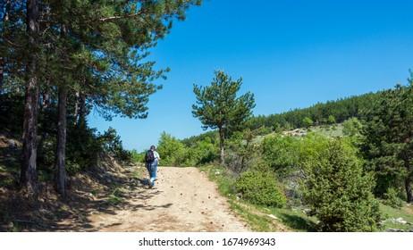 Hiking in the Rodopa mountain in South Bulgaria, Balkans, Europe.