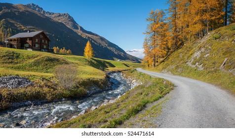 hiking route through autumnal sertig valley with colorful larch trees, prattigau switzerland
