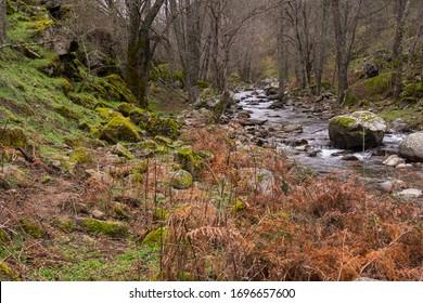 Hiking routes through the Iruelas Valley (Sierra de Gredos) next to the river. Avila (Spain)