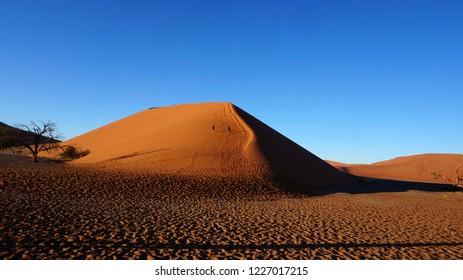 Dune 45 Namibia Images Stock Photos Vectors Shutterstock