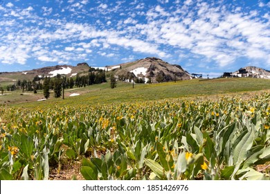 """Hiking Shirley Lake trail to high camp at """"Squaw Valley"""""""