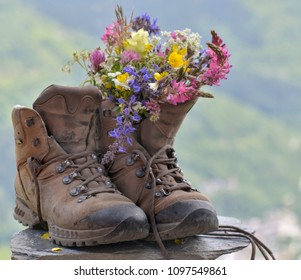 hiking shoes with pretty bouquet of wild flowers