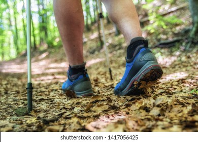 Hiking shoes walking on leaves in autumn forest