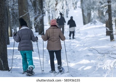 Hiking with snowshoes through the snowy forest.