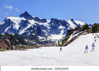 Hiking Summer Snowfields Glaciers Artist Point Mount Shuksan Mount Baker Highway Snow Mountain Washington State Pacific Northwest