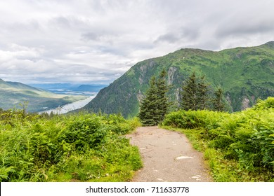A hiking tail leads down the steep slopes of Mount Roberts towards the tramway and the city of Juneau on the Gastineau Channel in Alaska.