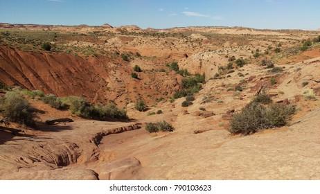 Hiking Through the Desert