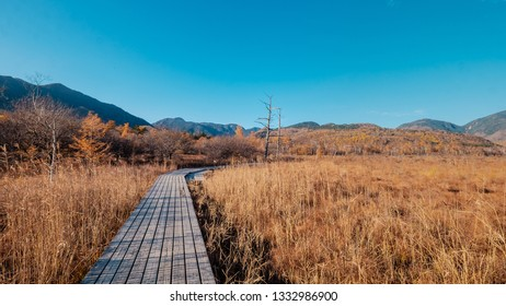 Hiking through the Senjogahara Marshland with mountains in the background during late autumn in Nikko, Japan