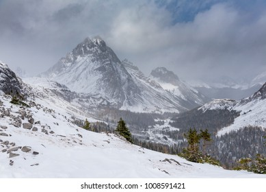 Hiking through a snowstorm. Snow covered mountain scenery from the Burstall Pass area Kananaskis Country Alberta Canada