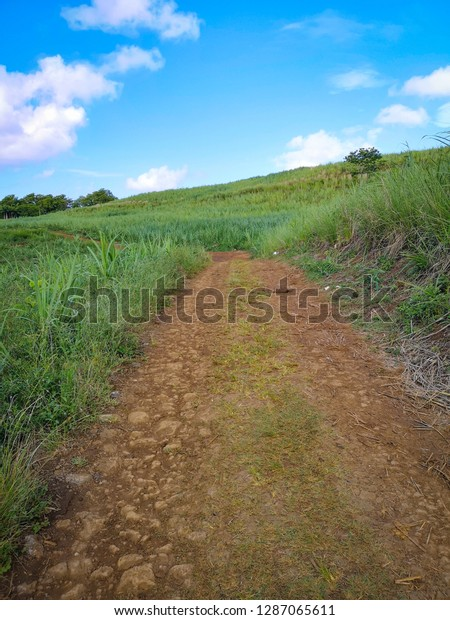 hiking trail africa