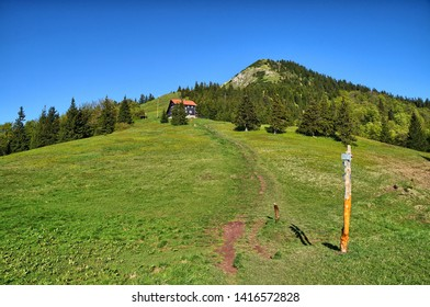 hiking trail along the mountains in Slovakia, Velka Fatra - Shutterstock ID 1416572828