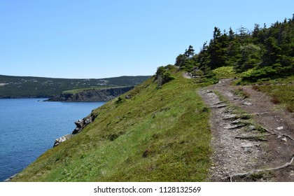 hiking trail along the shoreline of the Atlantic ocean, East Coast trail Silver Mine Head Path near Torbay NL Canada