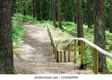 Hiking trail in the Altja, Lahemaa National Park, Estonia