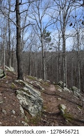 Hiking trail among rocks in Big Hill Pond State Park Tennessee