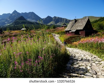 hiking trail around cute wooden cabins in valley Dolina Gasienicowa (Hala Gasienicowa) in mountain of Tatra National Park during sunny summer day, close to Zakopane city, Tatras, Poland, Europe