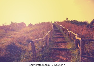 Hiking Trail in Autumn with a retro vintage